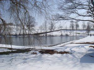 étang sous la neige 001